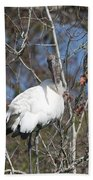 Wood Stork In A Tree Beach Towel