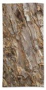 Wood Textures 4 Beach Towel