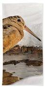 Woodcock In Winter Beach Towel