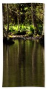 Wooded Reflection Beach Towel