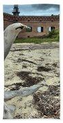 Wooden Seal Beach Towel