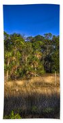 Woodland And Marsh Beach Towel by Marvin Spates