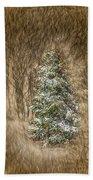 Woodland Christmas Beach Towel