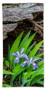 Woodland Dwarf Iris Wildflowers Beach Towel