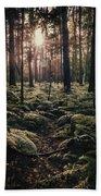Woodland Trees Beach Towel
