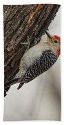 Woodpecker Beach Sheet