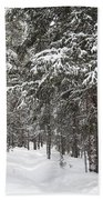 Woods In Winter Beach Towel