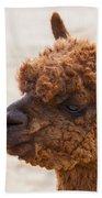 Woolly Alpaca Beach Towel