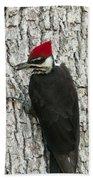 Working Woodpecker Beach Towel