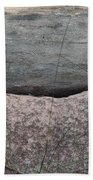 Worm Wood And Granite Beach Towel