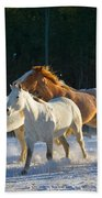 Wyoming Horses Beach Towel