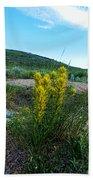 Wyoming Wildflowers Indian Paintflowers Beach Towel