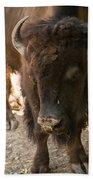 Waco Texas Buffalo Nose Drip Beach Towel