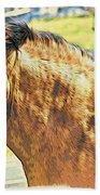 Yeller Horse Beach Towel