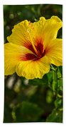 Yellow - Beautiful Hibiscus Flowers In Bloom On The Island Of Maui. Beach Towel