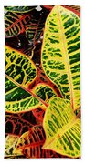 Yellow And Green Croton Beach Towel