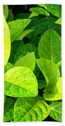 Yellow And Green Leaves Beach Towel