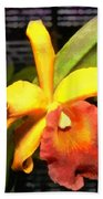 Yellow And Orange Cattleya In The Hothouse Beach Towel