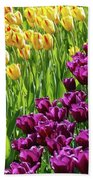 Yellow And Purple Tulips Beach Towel by Allen Beatty