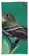 Yellow-bellied Flycatcher Beach Towel
