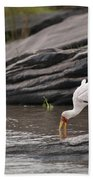 Yellow-billed Stork Fishing In River Beach Towel