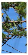 Yellow Bird In A Juniper Tree Beach Towel