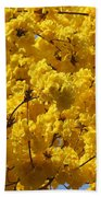 Yellow Blossoms Of A Tabebuia Tree Beach Towel