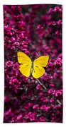 Yellow Butterfly On Red Flowering Bush Beach Towel