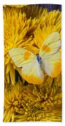 Yellow Butterfly On Yellow Mums Beach Towel