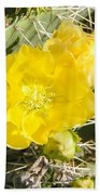 Yellow Cactus Blooms And Buds Beach Towel