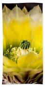 Yellow Cactus Flower Beach Towel