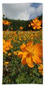 Yellow Cosmos Field In Flower Japan Beach Towel