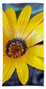 Yellow Flower Helianthus Beach Towel