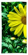 Yellow Flower Of Spring Beach Towel