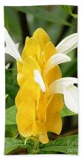 Yellow Ginger Blossom Beach Towel