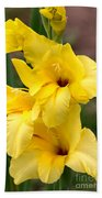 Yellow Gladiolus Beach Towel