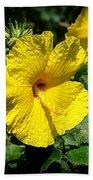 Yellow Hibiscus Hawaii State Flower Beach Towel