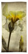 Yellow Iris - Vintage Colors Beach Towel