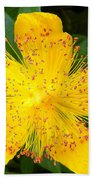 Yellow Lady Pins Beach Towel