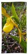 Yellow Lady Slippers Along Emerald Lake Trail In Yoho Np-bc Beach Towel