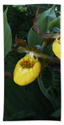 Yellow Lady Slippers On Forest Floor Beach Towel