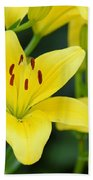 Yellow Lilly 8107 Beach Towel