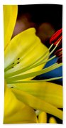 Yellow Lily Anthers Beach Towel