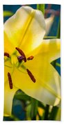 Yellow Lily Beach Towel