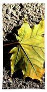 Yellow Maple Leaf On Asphalt Beach Towel