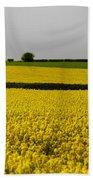 Yellow Mellow  Beach Towel