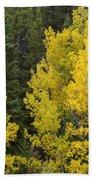 Yellow On Green Beach Towel