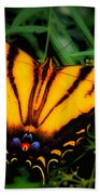 Yellow Orange Tiger Swallowtail Butterfly Beach Towel