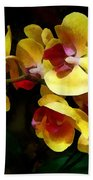 Yellow Orchids Shadow And Light Beach Towel