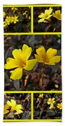 Yellow Oxalis - Oxalis Spiralis Vulcanicola Beach Towel